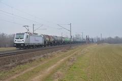 RC 187 070, Elze (Sander Brands) Tags: rheincargo hgk bombardier baureihe 187 leinetal train treni trein züg kbs 350 elze
