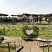 Rosengarten oberhalb vom Circo Massimo
