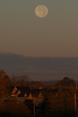 Hunter's Moon Setting, Whitby, Ontario (Tony Lea) Tags: morning autumn sun moon ontario canada cold sunrise dawn october durham natural satellite horizon low luna tony explore whitby lea anthony astronomy rise region autumnal equinox hunters astronomical explored tonylea thisimagemaynotbeusedinanywaywithoutpriorpermissionallrightsreserved2009 anthonylea