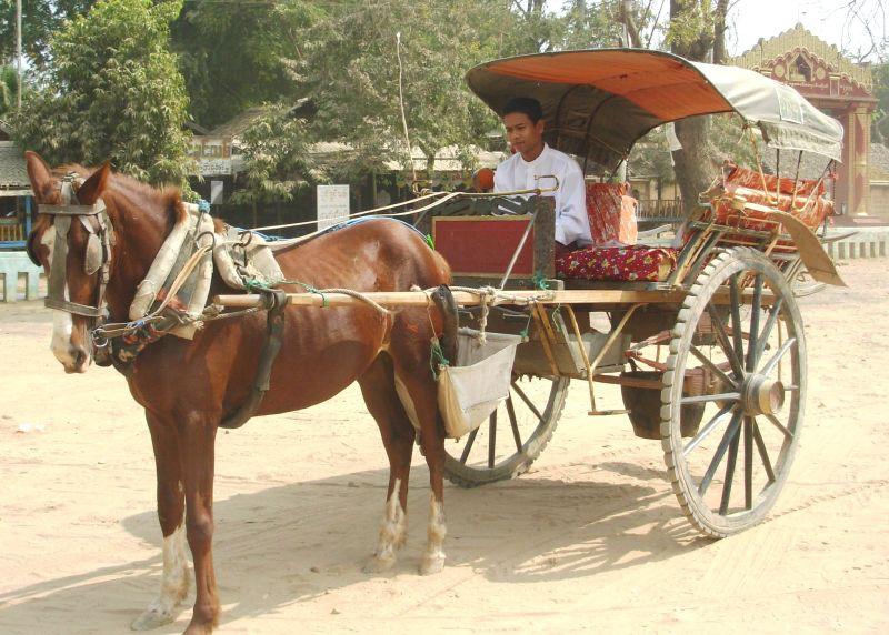 TG-Bagan