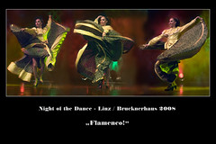 Night of the Dance - Flamenco! (guenterleitenbauer) Tags: pictures art nature linz austria photo dance google flickr foto dancing image photos stage kunst fineart natur fine picture images fotos tanz winner com imaging musik bild 2008 flamenco bilder tanzen gnter bhne brucknerhaus stepdance supershot fotografien guenter mywinners platinumphoto impressedbeauty leitenbauer diamondclassphotographer msuical betterthangood wwwleitenbauernet nightofthedance
