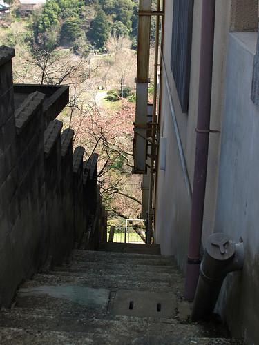 階段の向こうに・・・