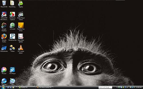 monkey background