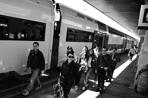 twit twit goes the train