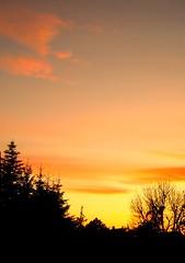Sunset---Leinfelden