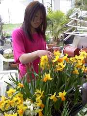 Alex with Daffodils