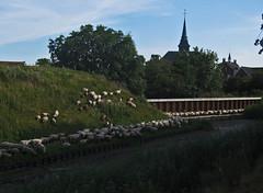 Roermond-48