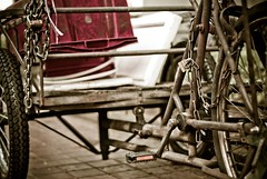 Workhorse (Os Sutrisno) Tags: street old city red singapore walkabout trishaw myfacebook