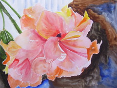Gumamela (ilaw) Tags: pink watercolor drawings hibiscus ilaw gumamela