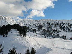 SCHEDA2 048 (massimo.buldrini) Tags: 2005 montagna valgardena