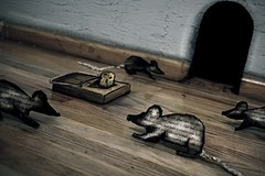 Rats! (Fer Gregory) Tags: pictures wood art sepia mxico cheese mexicana canon painting paper de mexico mouse eos wooden 3d code madera rat friend icons paint photographer floor hole artistic raton d background paintings myspace icon clip mexican mice rats oil mexique 40 mousetrap fotografia ratones vignette mexicano ratas comments comment fotografo rata coments piso hi5 codes 3dpainting freg mousehouse coment 40d fernandogregory canoneos40d canon40d reg onephotoweeklycontest fergregory fernandogregorymilan
