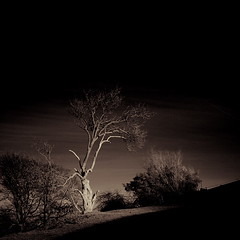 IMG_3576 (Uggla) Tags: uk longexposure shadow england 20d canon dark ir eos different sheffield filter infrared s10 crookes r72 77mm kood sigma1020 bwartaward goldstaraward koodinfraredr72filter torkeluggla