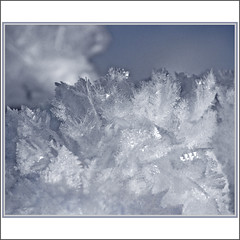 Creative force of nature (Katarina 2353) Tags: white nature creative frozen ice crystals shape form winter davos switzerland schweiz slope snowflake snow swiss film katarina2353 katarinastefanovic photography flickr image nikon