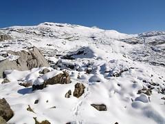 Silberen 091 (Shepherd & his Hot Dogs) Tags: schnee mountain snow mountains hot schweiz switzerland hiking natur berge climbing his karst crevasse bergwandern bergtour doline spalten silberen dogs pragelpass karrenfelder shepherd pyrenische berghunde pyrenean