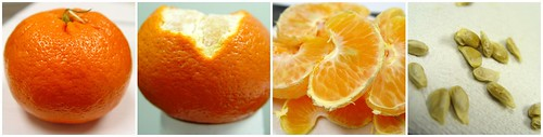 stages of eating a tangerine