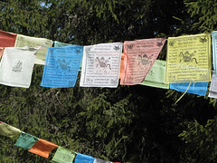 Tibetan Prayer Flags at Erdaohai (treasuresthouhast) Tags: china tibetan  sichuan prayerflag    erdaohai
