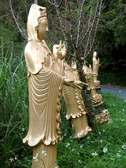 row of guanyins