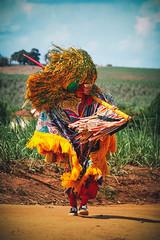 rural (gleicebueno) Tags: carnival party brazil music colors brasil rural canon cores dance folklore musica carnaval tradition popular festa dança pernambuco rhythm maracatu agricultural ritmo nação 30d folclore tradição caboclo nazaredamata cambinda