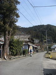 Shikoku pilgrim