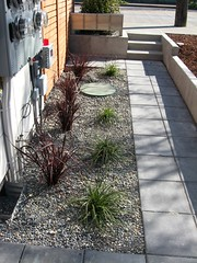 Simple Landscape (lifebegreen) Tags: seattle homes urban color green architecture modern contrast landscape concrete design construction forsale southpark grasses pathway gravel sustainable ecofriendly pavers dwelling builtgreen pbelemental