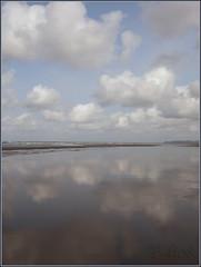 Iredale beach (elegaer) Tags: beach oregon peteriredale iredale