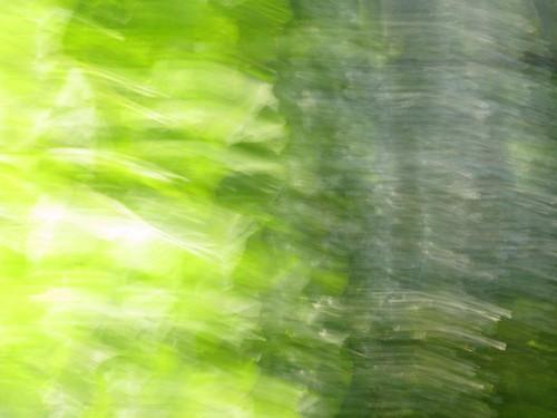Verde per Gu