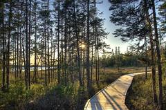 Sunset at cobbs hdr (Zach Bonnell) Tags: newfoundland 1750 tamron hdr gander cobbspond