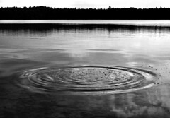 big ripple (Mr.  Mark) Tags: bw lake ontario water circle ripple surreal tobermory brucetrail markboucher
