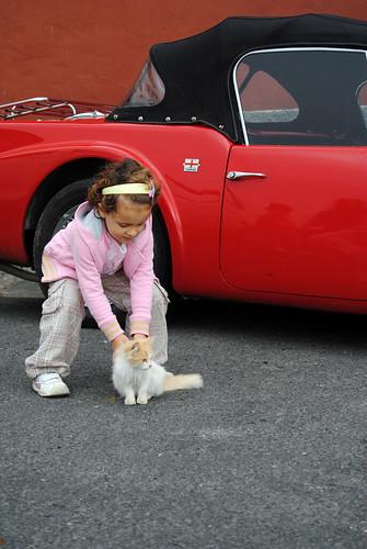 Niña, gato y coche
