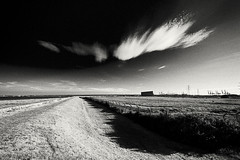 Grain Landscape (Richard Reader (luciferscage)) Tags: sea bw cloud white seascape black water monochrome thames river landscape may cranes medway isleofgrain graintower 2011 thamesport nikond700 richardreader