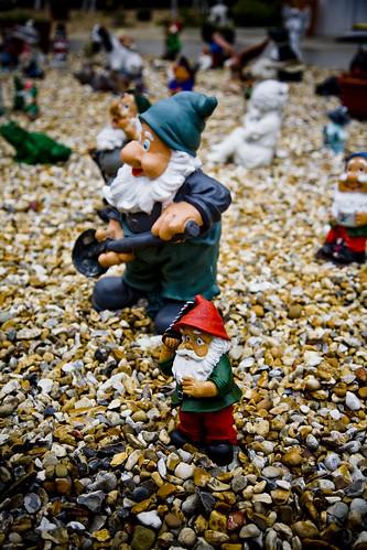 Gnome attack