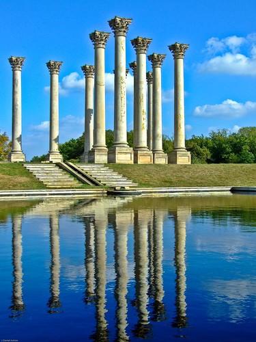 Capitol Columns by Daniel Ashton.