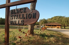 Black Stallion Hills. (Blackstallionhills.com) Tags: ranch travel homes horses costa black real office paradise estate hills spa stallion dreamhome