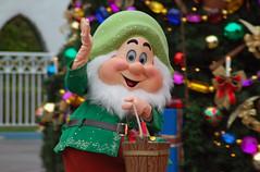 Disneyland December II (27)
