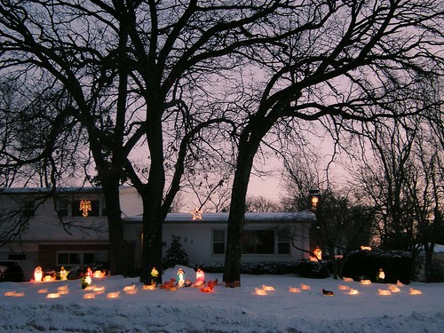 A Herd of Illuminated Sheep Pays Its Respects to the Baby Jesus
