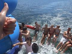 Net pool