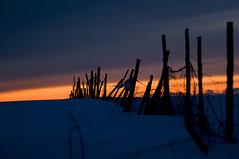 Winterlight (Tony Gulla) Tags: blue winter red sky white snow color nature norway landscape norge vinter natur rød 2008 lys snø sne andenes blå winterlandscape landskap vesterålen andoy nordland rødt hvit andøy blått andoya