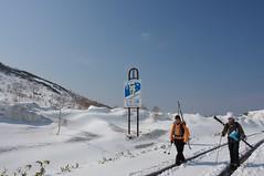 新雪の轍を進む