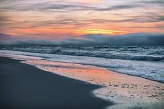 Alabama Sunrise and Beach (johnmcgrawphotography) Tags: alabama alabamasunrise beachsunrise canon canon5dsr gulfshores gulfshoresalabama gulfofmexico gulfofmexicobeach gulfofmexicoocean johnmcgrawphotography ocean orangebeach photography sunrise sunrisebeach travel travelphotography