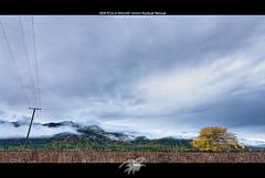 minutos antes de la lluvia (Pablosky.) Tags: luz de arbol eos rebel lluvia poste pablo linares 1020mm castillo fotografo xsi maza nuves precordillera