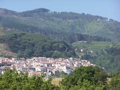 scaramella (mito_ducati990) Tags: gizzeria