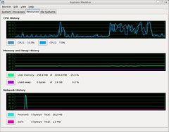 Dual Core as seen by GNOME system monitor