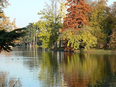 bois de boulogne en automne.jpg