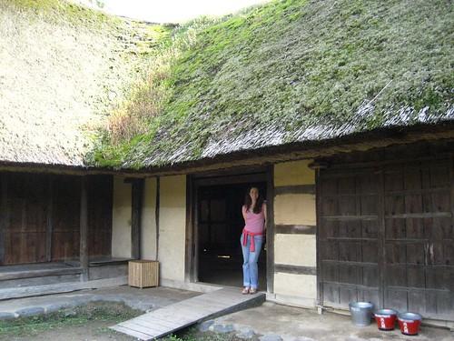 Farmhouse from Nambu, Iwate