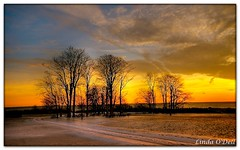 As I watch the sun go down (Linda O'Dell) Tags: winter fab soe supershot abigfave platinumphoto aplusphoto diamondclassphotographer flickrdiamond ysplix theperfectphotographer great123