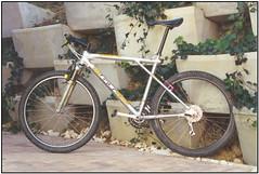Zaskar 1994