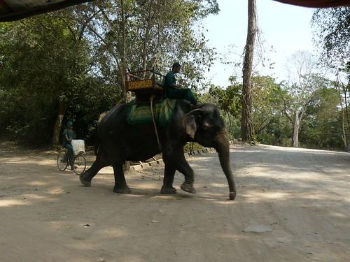 Cambodge - Angkor #321
