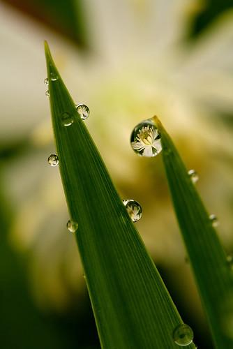 Rainy day 4