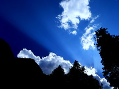 Yosemite Sunbeam (The SHED Gallery) Tags: sunlight yosemite sunbeam casualclicks jefflowe jefflowephotographycom httpjeffloweartistwebsitescom theshedgallery jeffloweartistwebsitescom theshedgallerylagmailcom