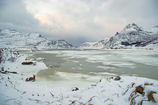 Snowflakes on the frozen sea